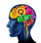 Hot Cognition Checklist