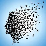 Intelligenza Emotiva e Mindfulness: basi di neuroscienze