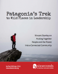 Patagonia's Trek to Wild Places in Leadership