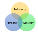 Purpose, Autonomy and an Engaged Workforce